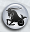 Daghoroscoop 23 april Steenbok door online-waarzegsters